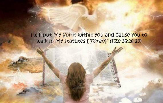 I will put my spirit within you