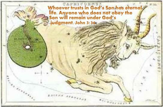 gedi-the-goat